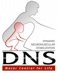 DNS-239x300