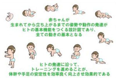 赤ちゃんの発達